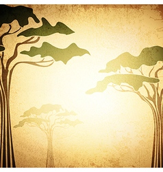 Africa Acacia Tree vector image
