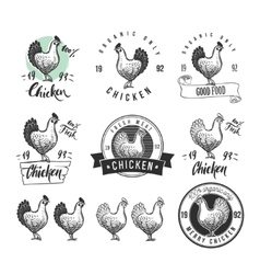 Chicken product logotypes set Hen meat and eggs vector