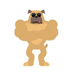 Dog strong cool serious pet smoking cigar emoji vector