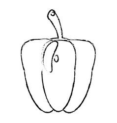 Pepper food diet healthy vector