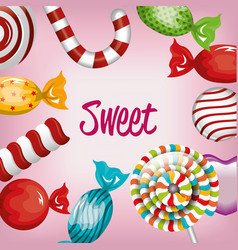 set sweet candies and lollipops design graphic vector image