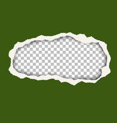 Snatched hole in green foliage color paper sheet vector