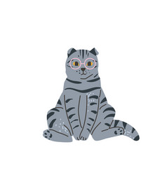 tabbritish grey cat with glasses sitting vector image