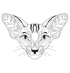 zentangle stylized head of cat hand drawn lace vector image
