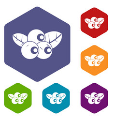 blueberries icons set hexagon vector image