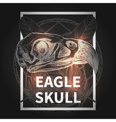 Hipster Design With Eagle Skull vector image vector image