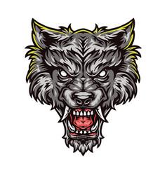 Aggressive werewolf beast colorful head vector