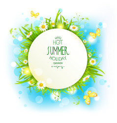 Banner with summer flowers vector image