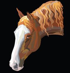 Colored horse portrait-4 vector