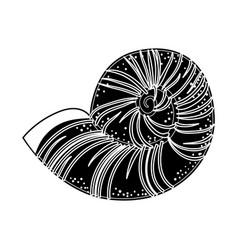 Conch marine animal vector