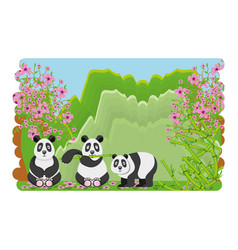 cute bears panda of culture oriental vector image