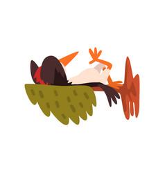 Cute woodpecker sleeping on a tree branch funny vector