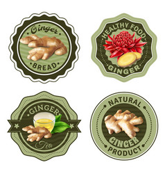 Ginger products labels set vector