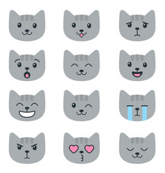 grey cats with different emotions isolated on vector image
