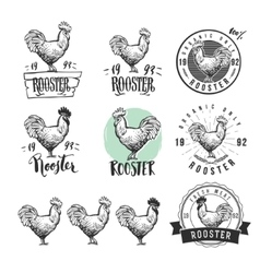 Rooster Chicken product logotypes set Hen meat vector