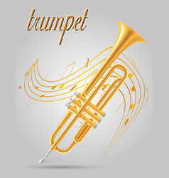 trumpet wind musical instruments stock vector image