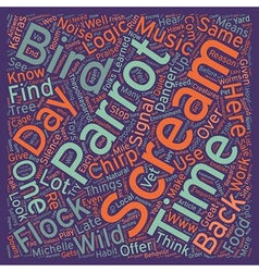 Why do birds scream text background wordcloud vector
