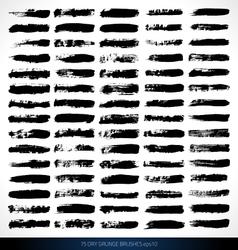 75 DRY GRUNGE BRUSHES vector image