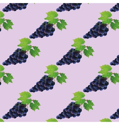 Background seamless pattern with black grape vector image vector image