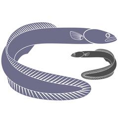 Eel vector image