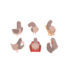 Funny grey pigeons cartoon characters set vector