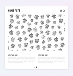 pet paws concept with place for text vector image