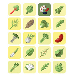 Vegetables and greens collection icon set vector