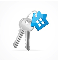 House keys with Blue Key chain vector image vector image