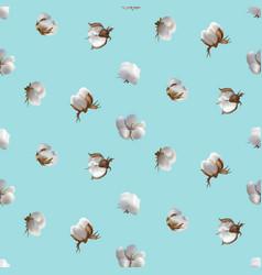 Cotton flowers seamless pattern vector