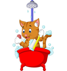 cute cat bathing time vector image