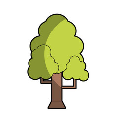 natural tree with branches to ecology care vector image
