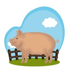 Pig animal farm in the field vector