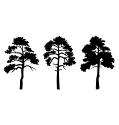 silhouette trees with leaves isilated on white vector image