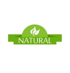Bright green label with leaves for natural vector image vector image