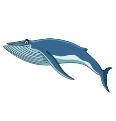 Big blue baleen whale vector image