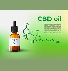 cbd oil bottle infographic with vector image