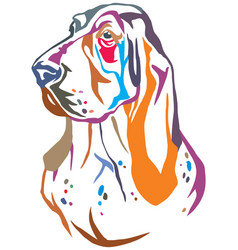 colorful decorative portrait of basset hound vector image