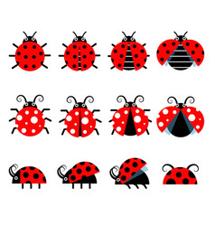 Cute ladybug icons cartoon-style bug icons vector