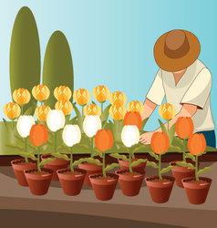 flower-gardener vector image