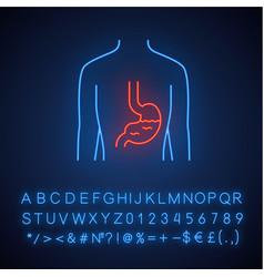 Healthy stomach neon light icon human organ vector