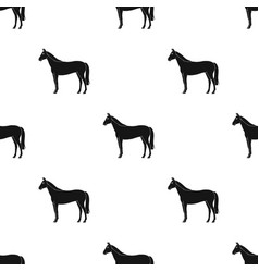 Horseanimals single icon in black style vector