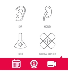 Lab bulb medical plaster and ear icons vector