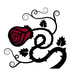 Rose flower decoration vector