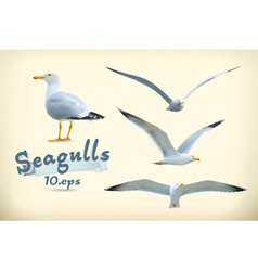 Sea gulls icon set vector image