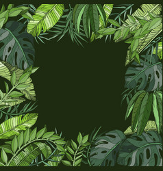tropical natural jungle palm background vector image