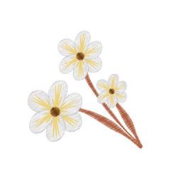 drawing jasmine flower ornament vector image vector image