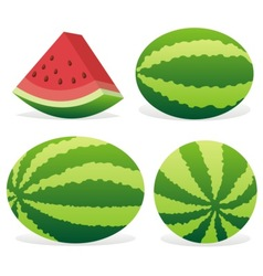 watermelon icons vector image vector image