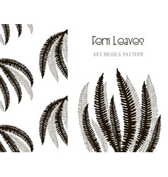 Fern leaves design art brush and pattern vector