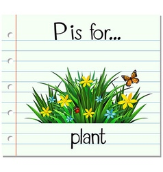 Flashcard letter P is for plant vector image