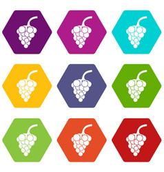 grape branch icon set color hexahedron vector image
